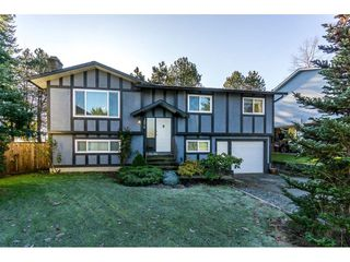 Main Photo: 2876 267A Street in Langley: Aldergrove Langley House for sale : MLS®# R2226858