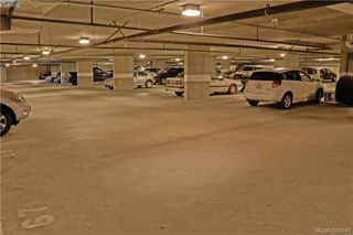 Photo 10: 312 870 Short Street in VICTORIA: SE Quadra Condo Apartment for sale (Saanich East)  : MLS®# 388548