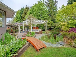 Photo 17: 788 Wesley Court in VICTORIA: SE Cordova Bay Single Family Detached for sale (Saanich East)  : MLS®# 391591