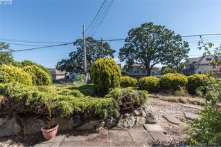 Photo 3: 918 Bay St in VICTORIA: Vi Hillside Single Family Detached for sale (Victoria)  : MLS®# 787949