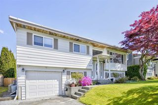 Main Photo: 12120 229 Street in Maple Ridge: East Central House for sale : MLS®# R2366647
