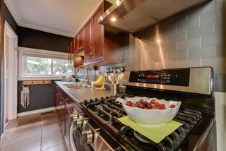 Photo 15: 10833 69 Avenue in Edmonton: Zone 15 House for sale : MLS®# E4160533