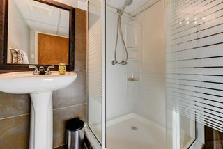 Photo 23: 10833 69 Avenue in Edmonton: Zone 15 House for sale : MLS®# E4160533