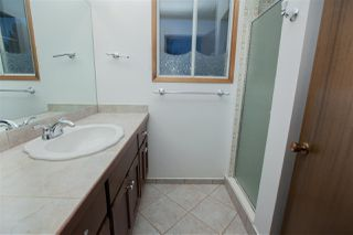 Photo 19: 3122 110A Street in Edmonton: Zone 16 House for sale : MLS®# E4179340