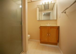 Photo 25: 3122 110A Street in Edmonton: Zone 16 House for sale : MLS®# E4179340