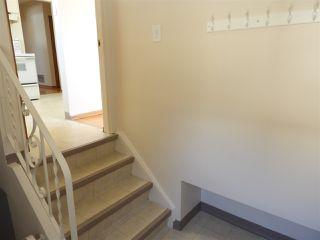 Photo 26: 14424 80 Avenue in Edmonton: Zone 10 House for sale : MLS®# E4192514