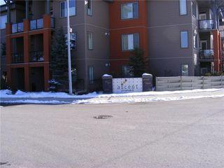 Photo 27: 206 2727 28 Avenue SE in Calgary: Dover Apartment for sale : MLS®# A1014596