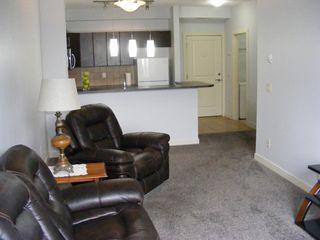 Photo 33: 206 2727 28 Avenue SE in Calgary: Dover Apartment for sale : MLS®# A1014596