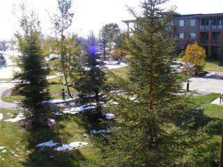 Photo 11: 206 2727 28 Avenue SE in Calgary: Dover Apartment for sale : MLS®# A1014596