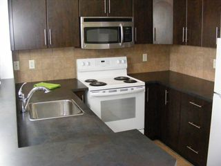 Photo 35: 206 2727 28 Avenue SE in Calgary: Dover Apartment for sale : MLS®# A1014596