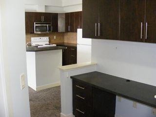 Photo 39: 206 2727 28 Avenue SE in Calgary: Dover Apartment for sale : MLS®# A1014596