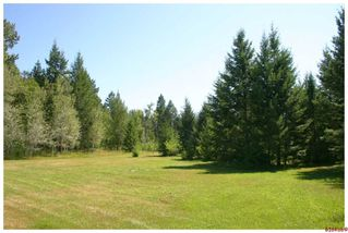 Photo 25: 5521 NW 10 AVE in Salmon Arm: NW House for sale : MLS®# 10058089