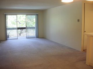 Photo 2: PACIFIC BEACH Condo for sale : 2 bedrooms : 1855 Diamond St. #213 in San Diego