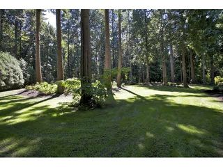 """Photo 20: 14262 GREENCREST Drive in Surrey: Elgin Chantrell House for sale in """"ELGIN ESTATES"""" (South Surrey White Rock)  : MLS®# F1448648"""