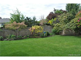 Photo 11: 1833 Gonzales Avenue in VICTORIA: Vi Fairfield East Single Family Detached for sale (Victoria)  : MLS®# 364321