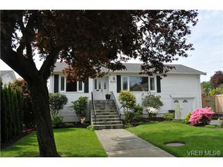 Photo 5: 1833 Gonzales Avenue in VICTORIA: Vi Fairfield East Single Family Detached for sale (Victoria)  : MLS®# 364321