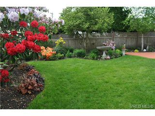 Photo 9: 1833 Gonzales Avenue in VICTORIA: Vi Fairfield East Single Family Detached for sale (Victoria)  : MLS®# 364321