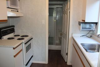 Photo 11: 40 ROBERTSON Crescent in Hope: Hope Center House for sale : MLS®# R2155902