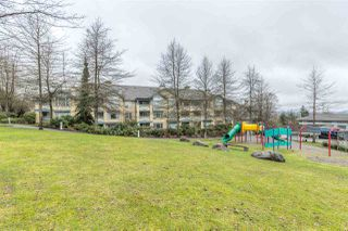 "Photo 14: 210 5281 OAKMOUNT Crescent in Burnaby: Oaklands Condo for sale in ""THE LEGENDS"" (Burnaby South)  : MLS®# R2158727"