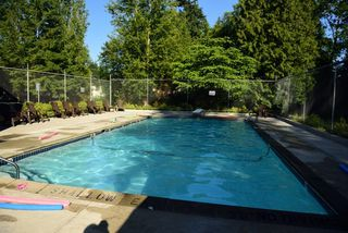 """Photo 13: 24 6617 138 Street in Surrey: East Newton Townhouse for sale in """"Hyland Creek"""" : MLS®# R2182099"""