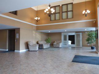"Photo 5: 202 45645 KNIGHT Road in Sardis: Sardis West Vedder Rd Condo for sale in ""COTTON RIDGE"" : MLS®# R2189370"
