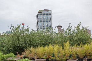 "Photo 13: 303 22 E CORDOVA Street in Vancouver: Downtown VE Condo for sale in ""Van Horne"" (Vancouver East)  : MLS®# R2191464"