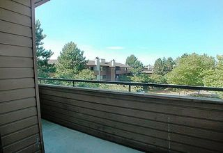 "Photo 9: 304 7297 MOFFATT Road in Richmond: Brighouse South Condo for sale in ""DORCHESTER CIRCLE"" : MLS®# R2195127"