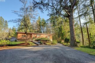 Photo 15: 456 Sparton Rd in VICTORIA: SW Prospect Lake House for sale (Saanich West)  : MLS®# 779975