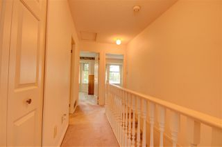 """Photo 19: 101 8060 121A Street in Surrey: Queen Mary Park Surrey Townhouse for sale in """"Hadley Green"""" : MLS®# R2255526"""