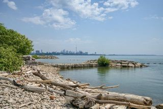 Photo 1: 716 5 Marine Parade Drive in Toronto: Mimico Condo for lease (Toronto W06)  : MLS®# W4156187
