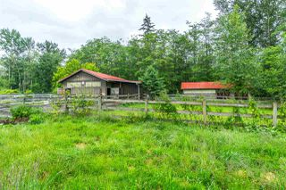Photo 18: 22778 28 Avenue in Langley: Campbell Valley House for sale : MLS®# R2289074