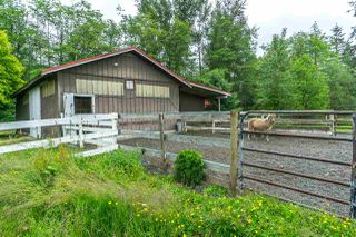 Photo 16: 22778 28 Avenue in Langley: Campbell Valley House for sale : MLS®# R2289074