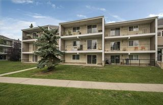 Main Photo: 2 3831 76 Street in Edmonton: Zone 29 Condo for sale : MLS®# E4126147
