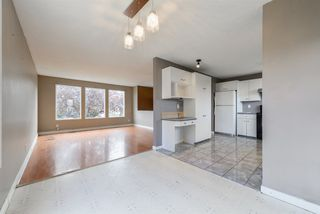 Photo 10: 459 Huffman Crescent in Edmonton: Zone 35 House for sale : MLS®# E4129957