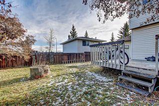 Photo 5: 7 PINEBROOK Place NE in Calgary: Pineridge Detached for sale : MLS®# C4221689