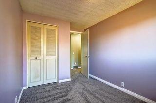 Photo 25: 7 PINEBROOK Place NE in Calgary: Pineridge Detached for sale : MLS®# C4221689