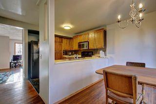 Photo 11: 7 PINEBROOK Place NE in Calgary: Pineridge Detached for sale : MLS®# C4221689