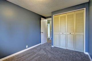Photo 23: 7 PINEBROOK Place NE in Calgary: Pineridge Detached for sale : MLS®# C4221689