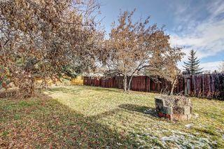 Photo 7: 7 PINEBROOK Place NE in Calgary: Pineridge Detached for sale : MLS®# C4221689