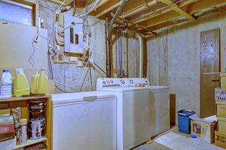 Photo 27: 7 PINEBROOK Place NE in Calgary: Pineridge Detached for sale : MLS®# C4221689