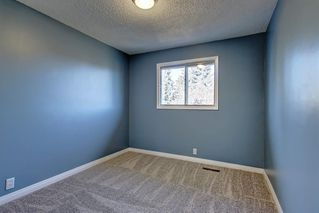 Photo 22: 7 PINEBROOK Place NE in Calgary: Pineridge Detached for sale : MLS®# C4221689