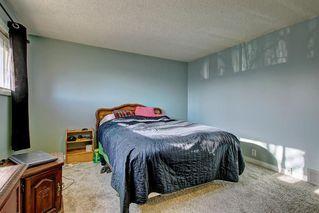 Photo 20: 7 PINEBROOK Place NE in Calgary: Pineridge Detached for sale : MLS®# C4221689