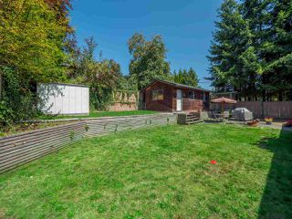 Photo 16: 4352 GUNCLUB Road in Sechelt: Sechelt District House for sale (Sunshine Coast)  : MLS®# R2339883