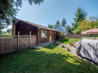 Photo 17: 4352 GUNCLUB Road in Sechelt: Sechelt District House for sale (Sunshine Coast)  : MLS®# R2339883