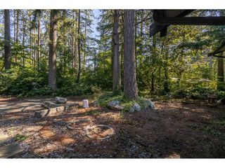 Photo 17: 13458 58 Avenue in Surrey: Panorama Ridge House for sale : MLS®# R2478163