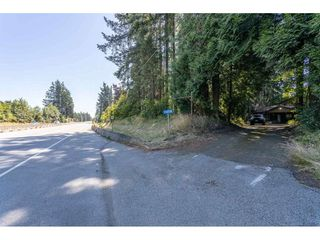 Photo 30: 13458 58 Avenue in Surrey: Panorama Ridge House for sale : MLS®# R2478163