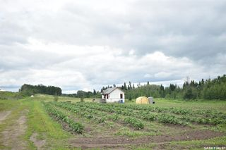 Photo 16: Green house Operation in Canwood: Residential for sale (Canwood Rm No. 494)  : MLS®# SK818734