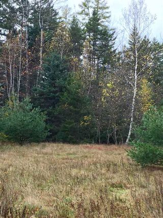 Photo 2: Lot Sweetland Road in Farmville: 405-Lunenburg County Vacant Land for sale (South Shore)  : MLS®# 202022943