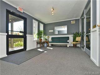 Photo 17: 310 1975 Lee Ave in VICTORIA: Vi Jubilee Condo for sale (Victoria)  : MLS®# 697983