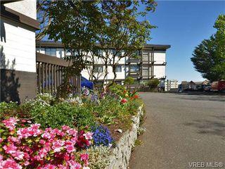 Photo 18: 310 1975 Lee Ave in VICTORIA: Vi Jubilee Condo for sale (Victoria)  : MLS®# 697983